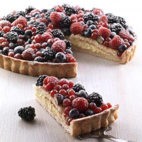 fornitura Bindi dessert Bari Bat