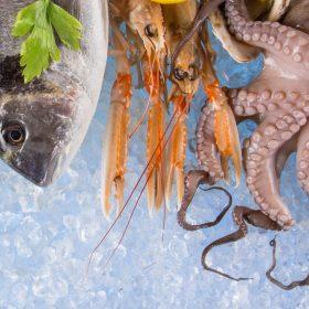 distribuzione ittico puglia